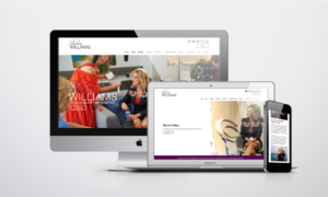 SW website