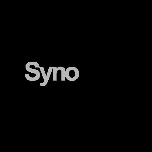 Synology logo Standard