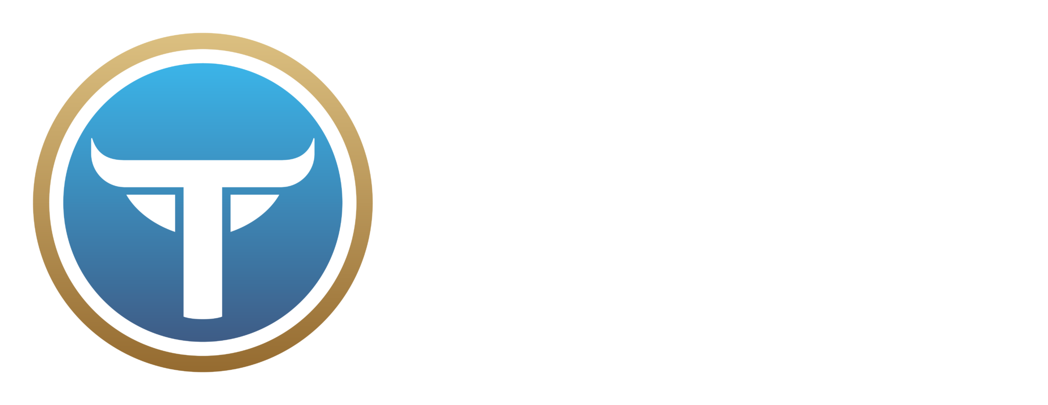 Taurus Marketing logos 46