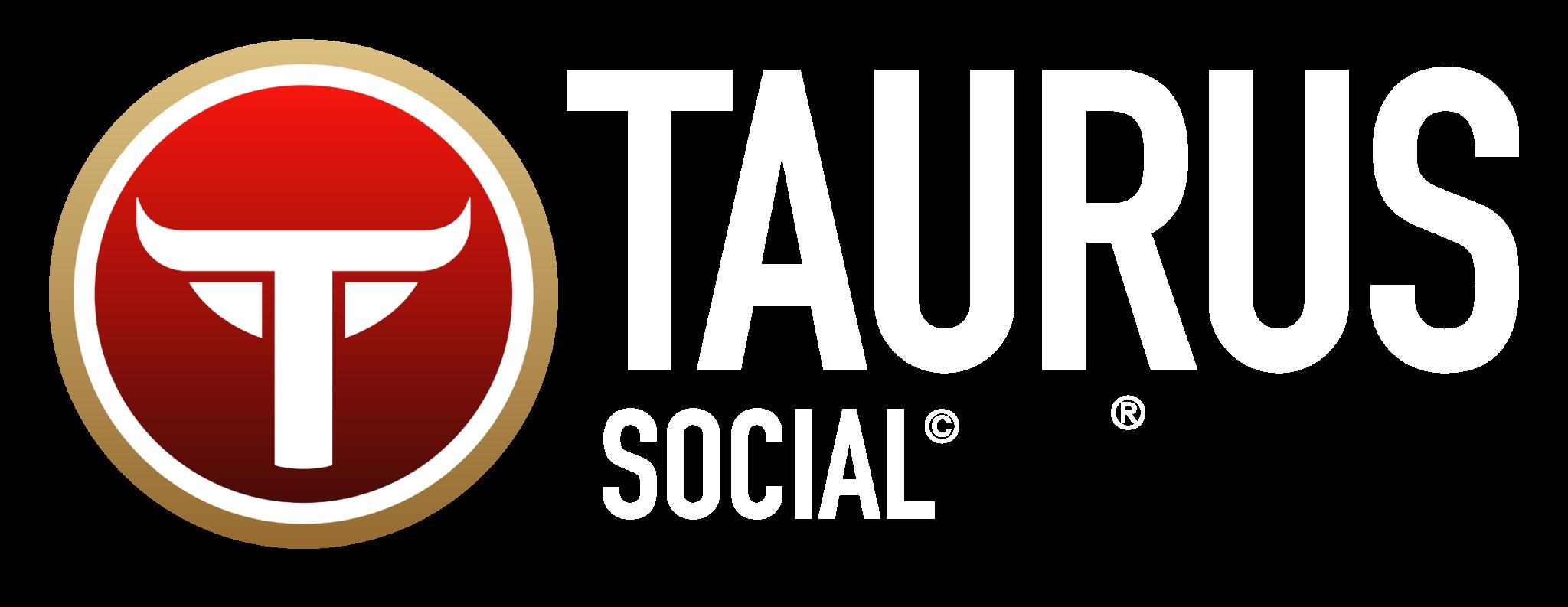 Taurus Marketing logos 56