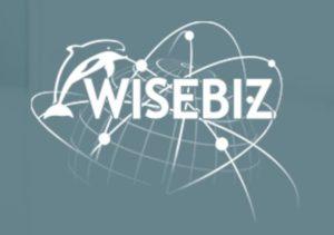 Wisebiz 1